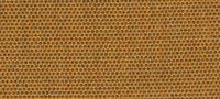 8000 panama tangerine